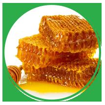 sap-ong